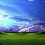 longhorn_snowy