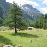 BXK9360_paisagem-de-montanha--suica-por-eliomar-ribeiro800