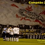 campeao-da-copa-do-brasil-2009_3898_1024x768