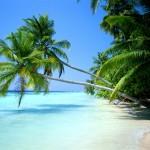 praia1wall