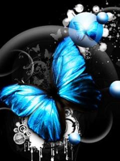 Blue_Butterfly_2
