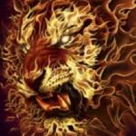 Fire_Lion