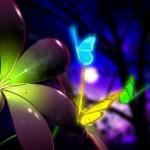 Neon_Butterflies