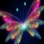 Neon_Butterfly