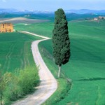 fazenta-italiana_2886_1600x1200