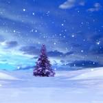 nataldi5
