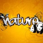 nature_2264_1600x1200