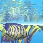 3D_Fish1