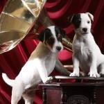 Gramophone_Pups