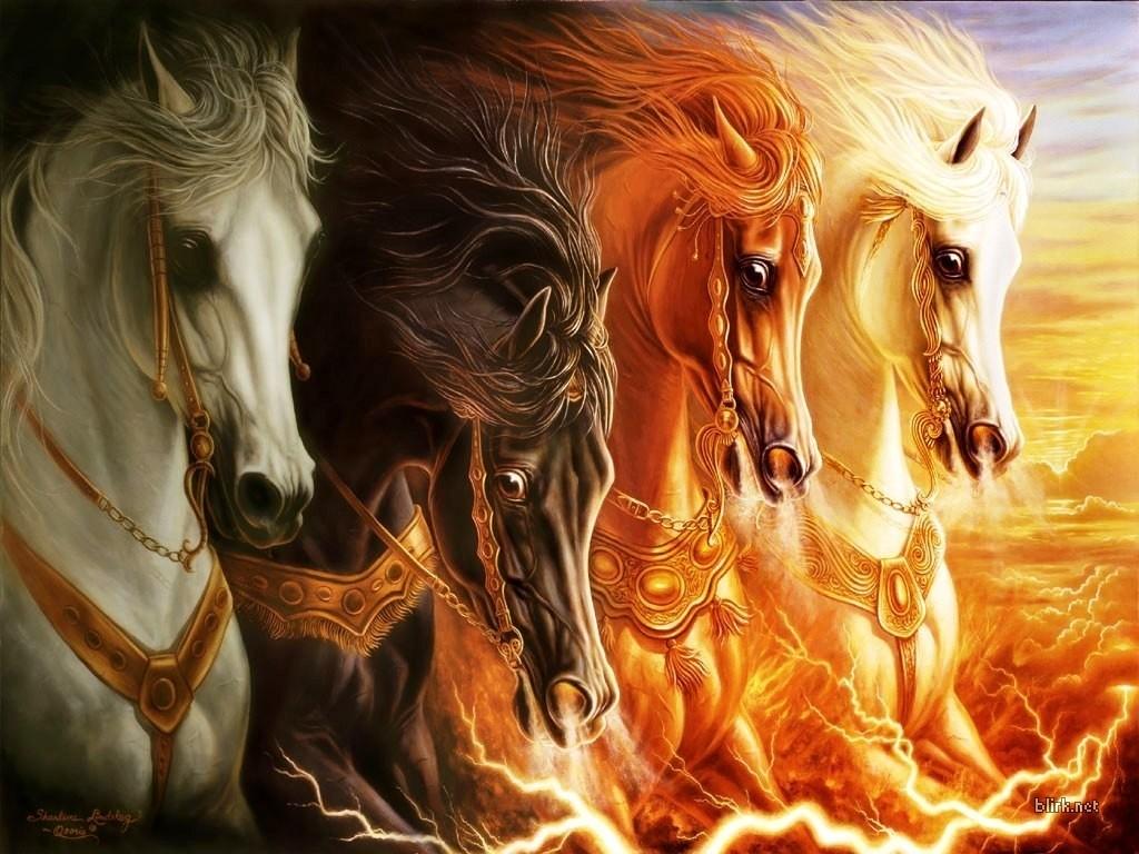varios-cavalos-ac8b5