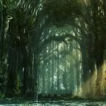 floresta-3d