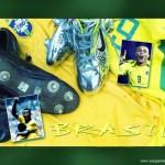 brazil-world-cup-200_1024x768_78705