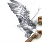 Animaster Eagle