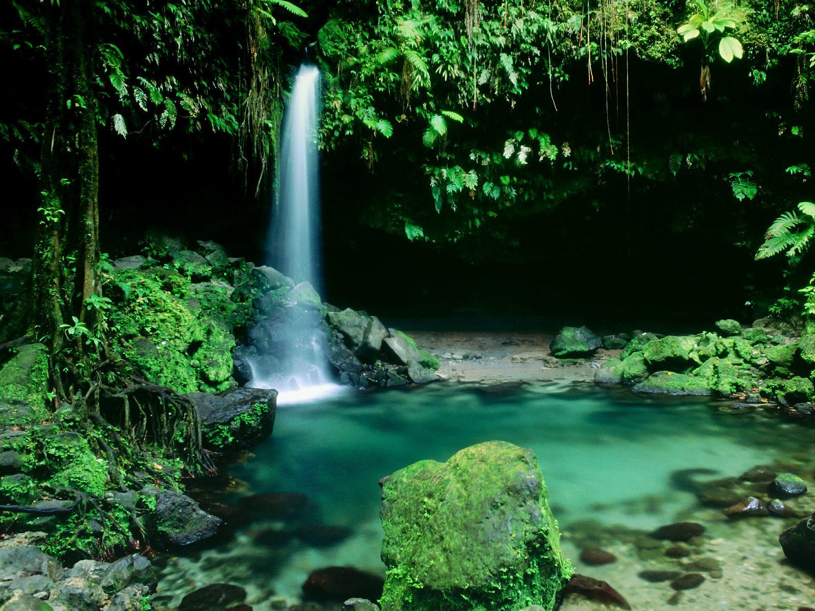 Cachoeira Paradisíaca