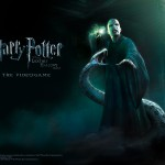 ws_Harry_Potter-_Deathly_Hallows_1600x1200