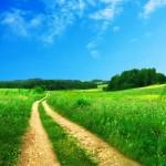 beautiful-field-scenery-wallpaper