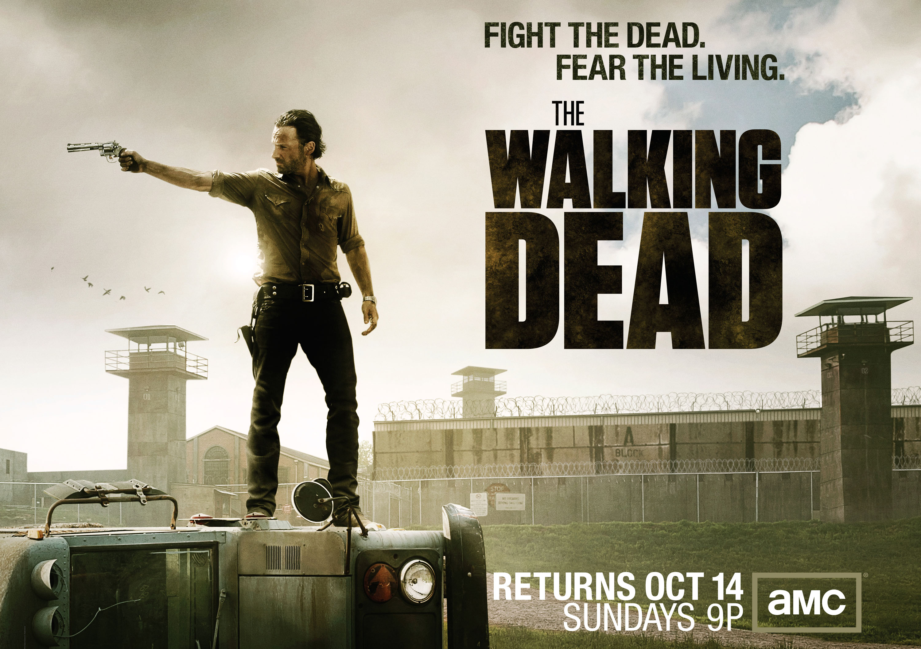 The Walking Dead Download #3