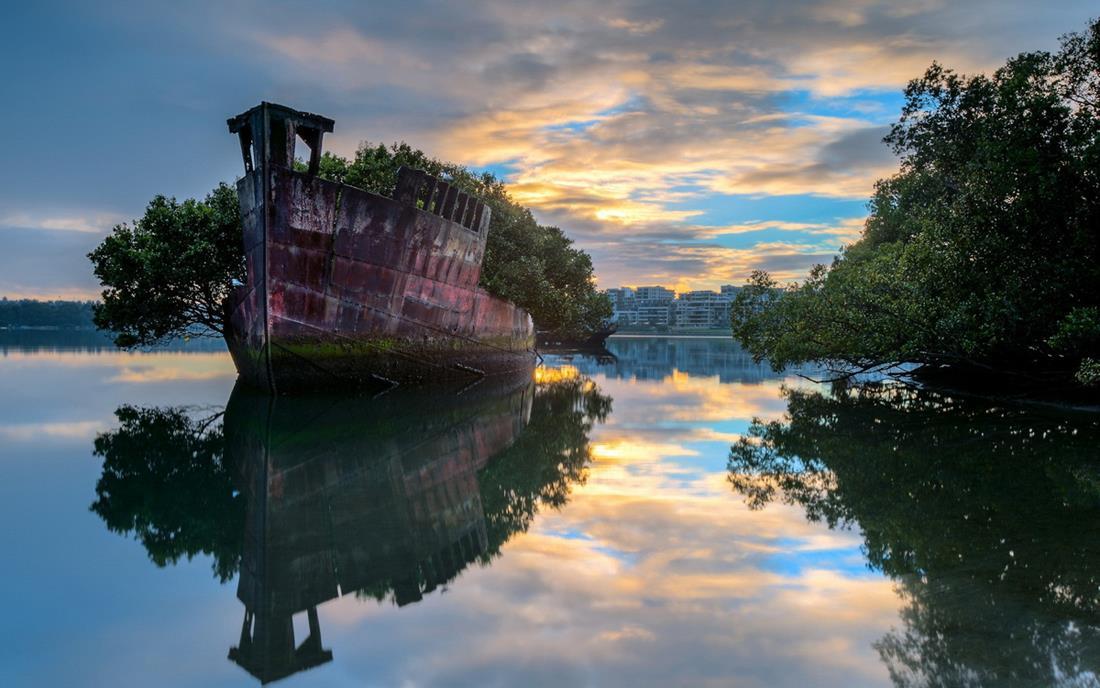 Bosque flutuante em um navio abandonado