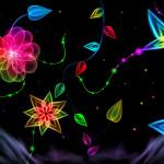 papel_de_parede_de_neon-36414