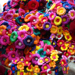 Frases-de-amor-Flores