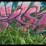 00363_graffitti_1680x1050