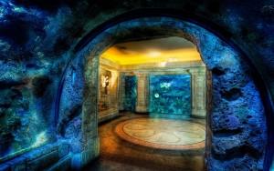 Papel-de-Parede-aquario-36290